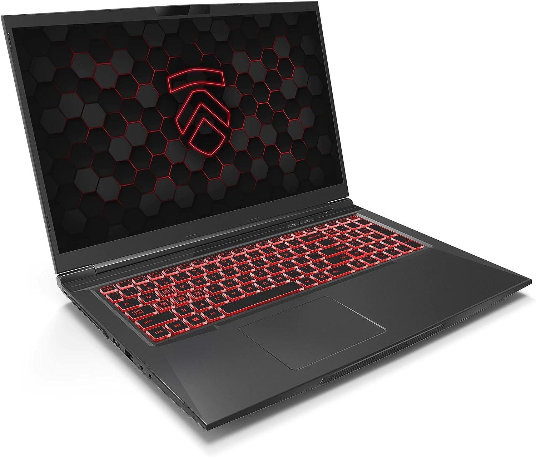 Matrix RP-17 Ultra Performance Gaming Laptop PC: AMD Ryzen 4800H 8-Core CPU NVIDIA GeForce RTX 3060 Graphics 17.3