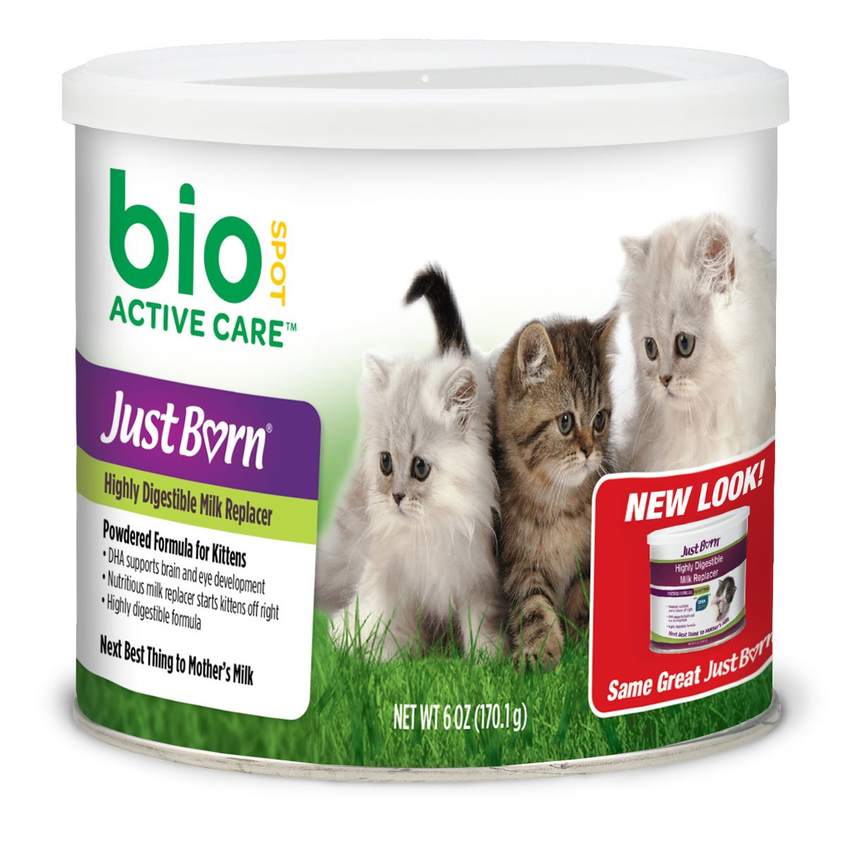 Buy Bio Spot Active Care Just Born With Dha Milk Replacer For Kittens Powder Formula Online At Low Prices In India Amazon In