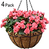 Amagabeli 4 Pack Metal Hanging Planter Basket with Coco Coir Liner 14 Inch Round Wire Plant Holder with Chain Porch Decor Flower Pots Hanger Garden Decoration Indoor Outdoor Watering Hanging Baskets