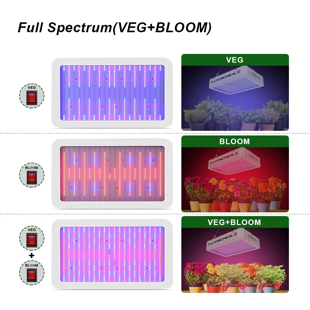 2000w Led Grow Light Full Spectrum Plant Grow Light With Veg And Bloom Switch For Hydroponic