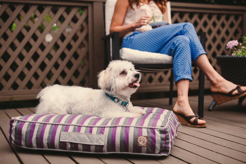One for Pets Siesta Indoor/Outdoor Pillow Pet Bed, Small, Orange [並行輸入品]