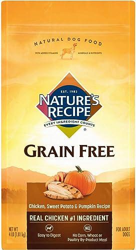 Nature S Recipe Grain Free Dry Dog Food Chicken