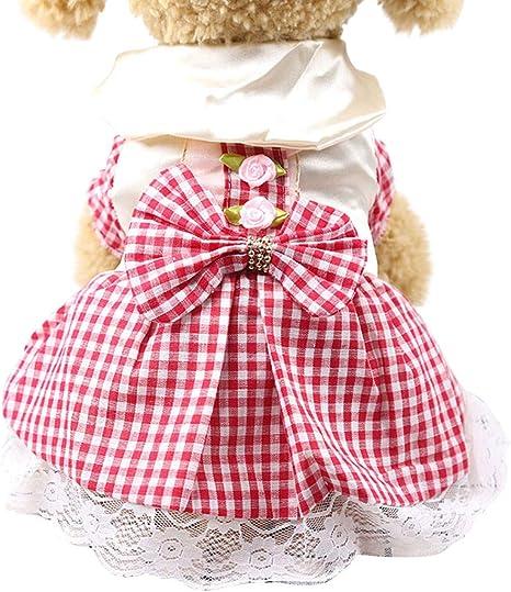 Gusspower-ropa mascotas, Vestido de Princesa Encaje ...