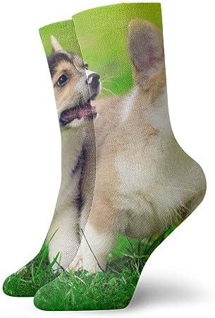 shizh Lindos cachorros de Pembroke Welsh Corgi corriendo Calcetines casuales transpirables Calcetines deportivos de viaje Yoga Caminar Ciclismo Correr Fútbol 30cm
