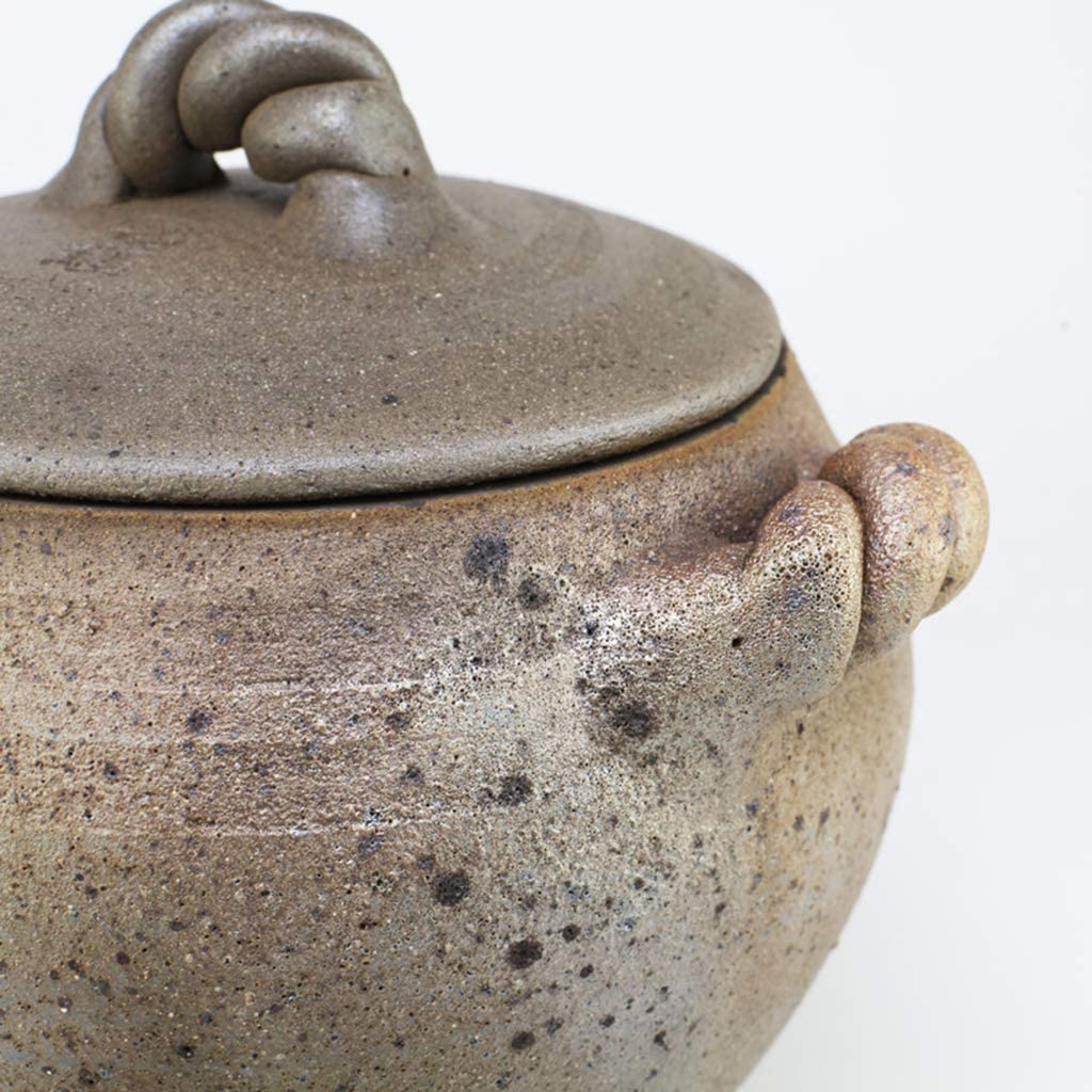 FCSFSF Earthen Pot,Stovetop Cookware,Vintage Handmade Casserole Clay Pot,Natural Glazed Clay Cooker,Slow Cooker,Round Casserole with Lid,Healthy Soup Pot Crock Green 5l