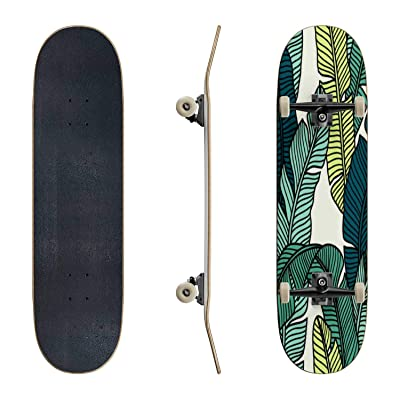 EFTOWEL Skateboards Seamless Pattern of Tropical Palms Leaves Colorful Seamless Stock Classic Concave Skateboard Cool Stuff Teen Gifts Longboard Extreme Sports for Beginners and Professionals : Sports & Outdoors