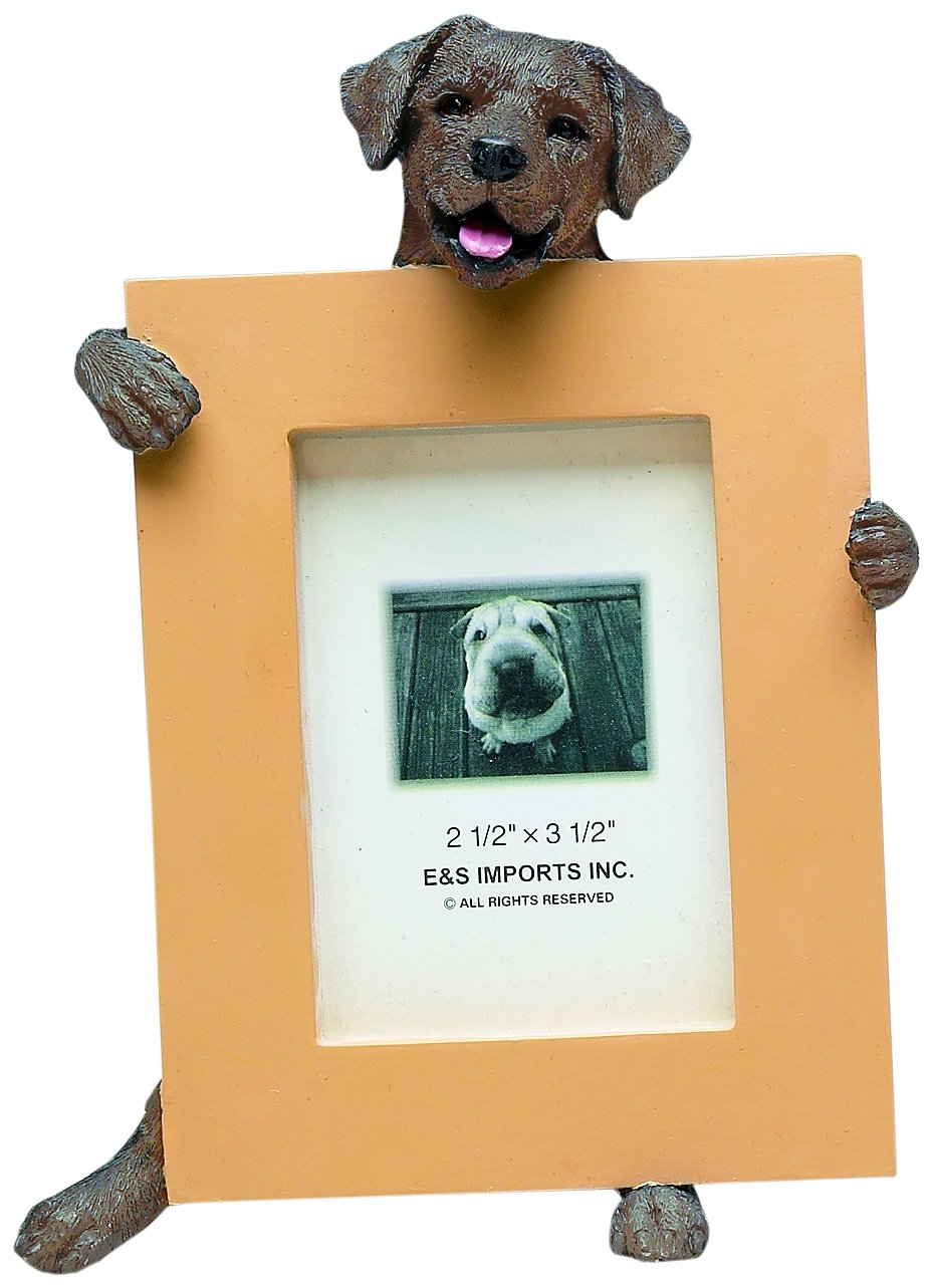 Chocolate Lab Picture Frame Holds Your Favorite 2.5 by 3.5 Inch Photo, Hand Painted Realistic Looking Chocolate Lab Stands 6 Inches Tall Holding Beautifully Crafted Frame, Unique and Special Chocolate Lab Gifts for Chocolate Lab Owners