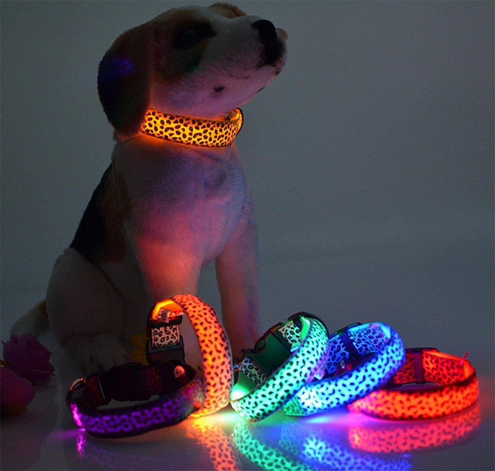 Da WA bater/ía noche LED perro seguridad Collar Moda leopardo patr/ón Durable Nylon Cuello Mascota Suministros