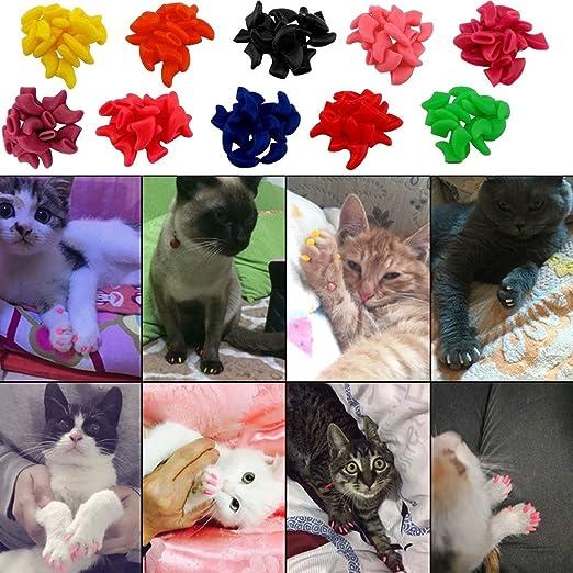 Amazon.com: VICTHY - 100 tapones de uñas para gatos y gatos ...