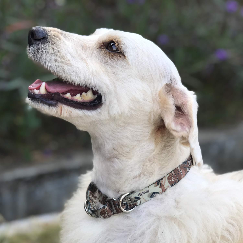 Hyhug Collare martingala Anti-Fuga a Due Anelli per Cani di Grossa Taglia Grande L, Forest Camo Allenamento Professionale e Uso Quotidiano.