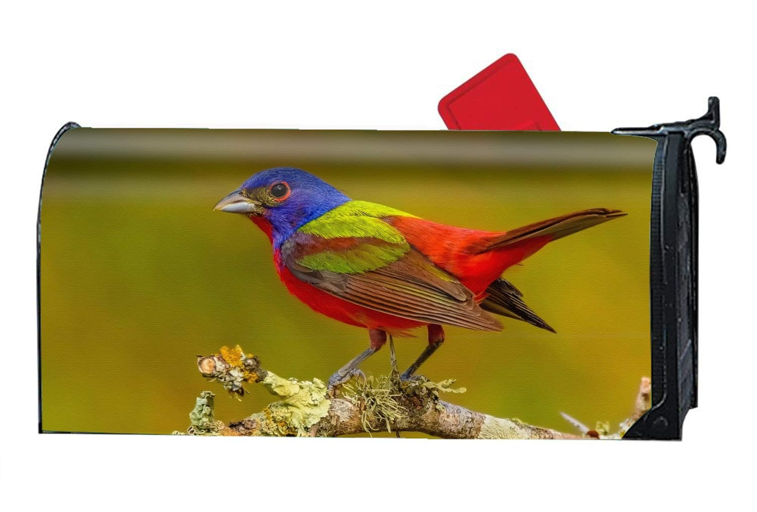 FANMIL Magnetic Mailbox Cover - Animal Bunting Birds Colors Painted Bird Artistic Passerine Themed, Decorative Mailbox Wrap for Standard Size, Customized Design ¨C Multicolor, 9x21 inches