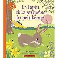 Au fil des saisons : Le lapin et la surprise du printemps