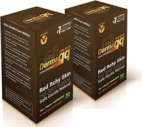 Dermaqq Best Absorption Ubiquinol – CoQ10 for Dogs and Cats Hot Spots, Hair Loss, Dermatitis Support 2 Boxes – 100MG softgels