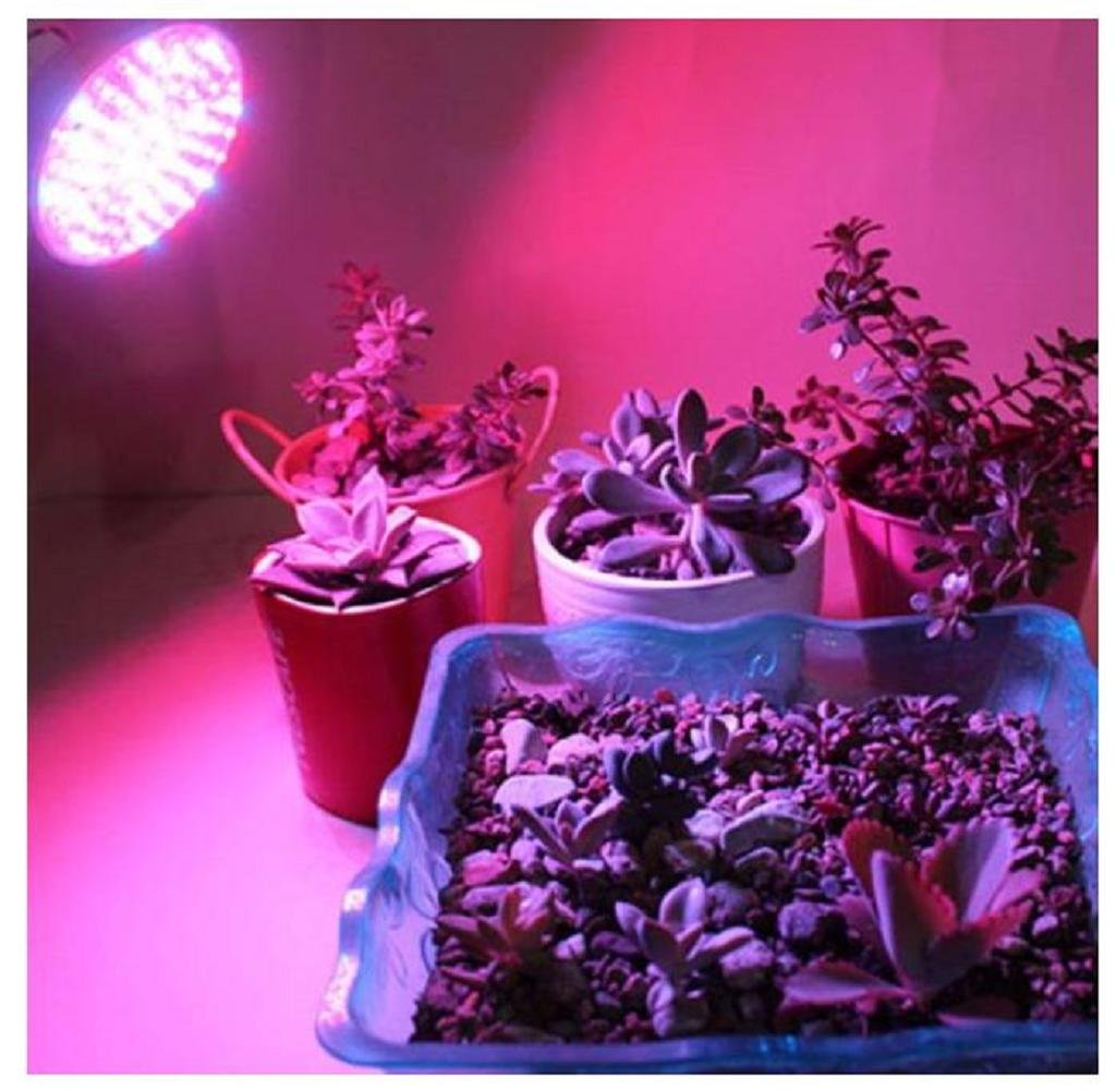E27 Plant Light,Malloom 18 LED E27 Grow Light Lamp Veg Flower Indoor Hydroponic Plant Full Spectrum 18W [Energy Class A+] L-01