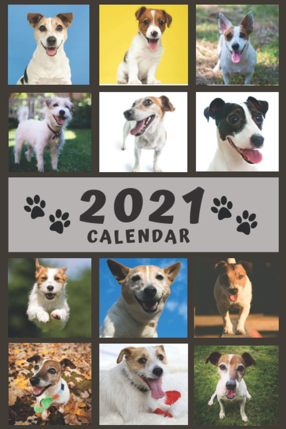 Happy Jack Russell Terrier Calendar 2021
