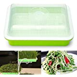 Seed Sprouter Tray Free PP Soil-Free Big Capacity Healthy Wheatgrass Grower Planting Grow Box