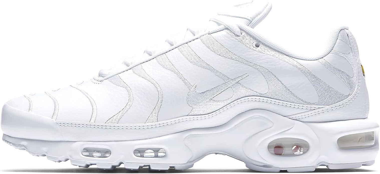 Amazon.com | Nike Air Max Plus Mens Aj2029-100 Size 13 ...