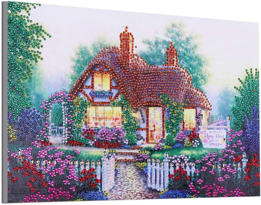 ShuoBeiter DIY 5D Diamond Painting Kits Special Shaped Drill Embroidery Kits Cross Stitch Home Wall Art Craft Decoration Painting by Diamonds (Garden)
