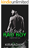 Never Trust a Bad Boy (The Never Trust Series)