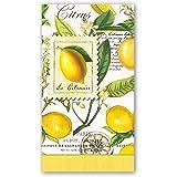 Michel Design Works 15 张装餐巾纸 柠檬马勒 4.375 X 7.875-inches
