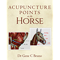 Acupuncture Points on the Horse (English Edition)