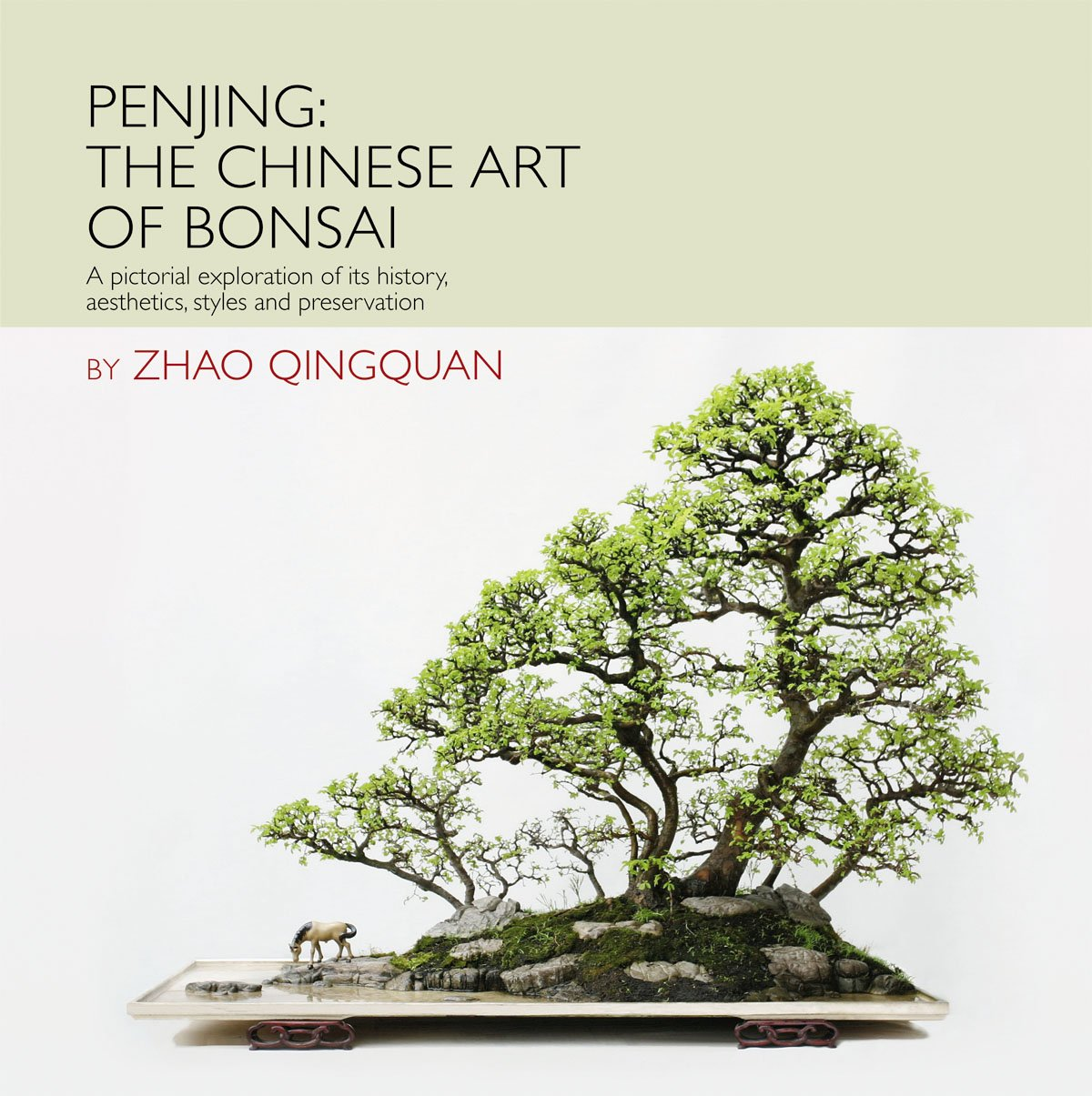 Penjing Pictorial Exploration Aesthetics Preservation product image
