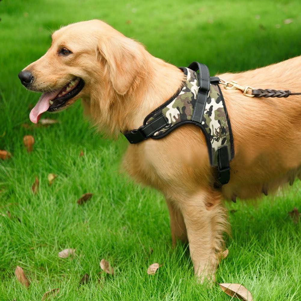 Pettorina per Cani guinzaglio di Sicurezza per Cani di Taglia Media e Grande Regolabile Blackr