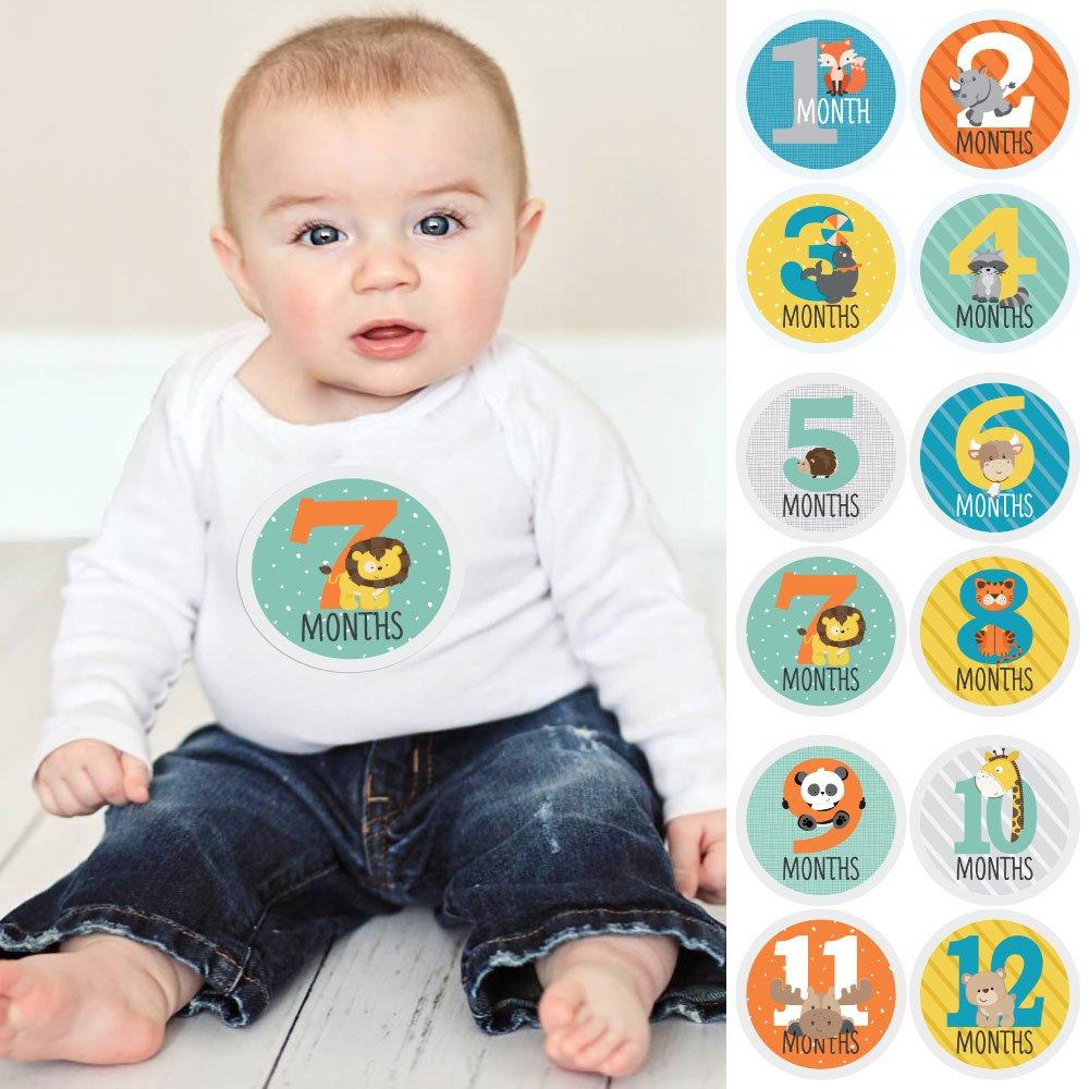 Zoo Animals - Baby Monthly Sticker Set - Baby Shower Gift Ideas - 12 Piece