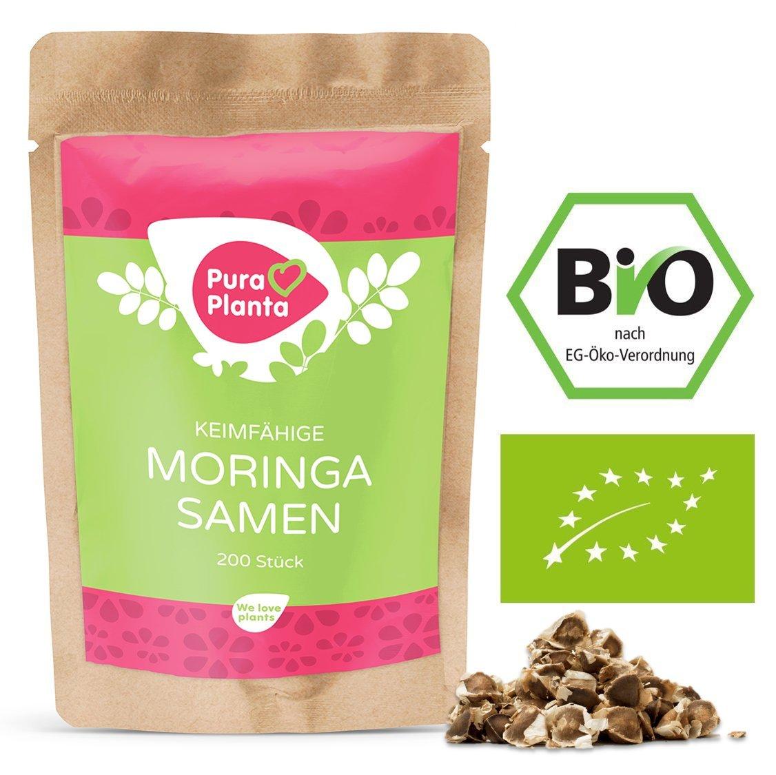 Moringa Samen kaufen BIO
