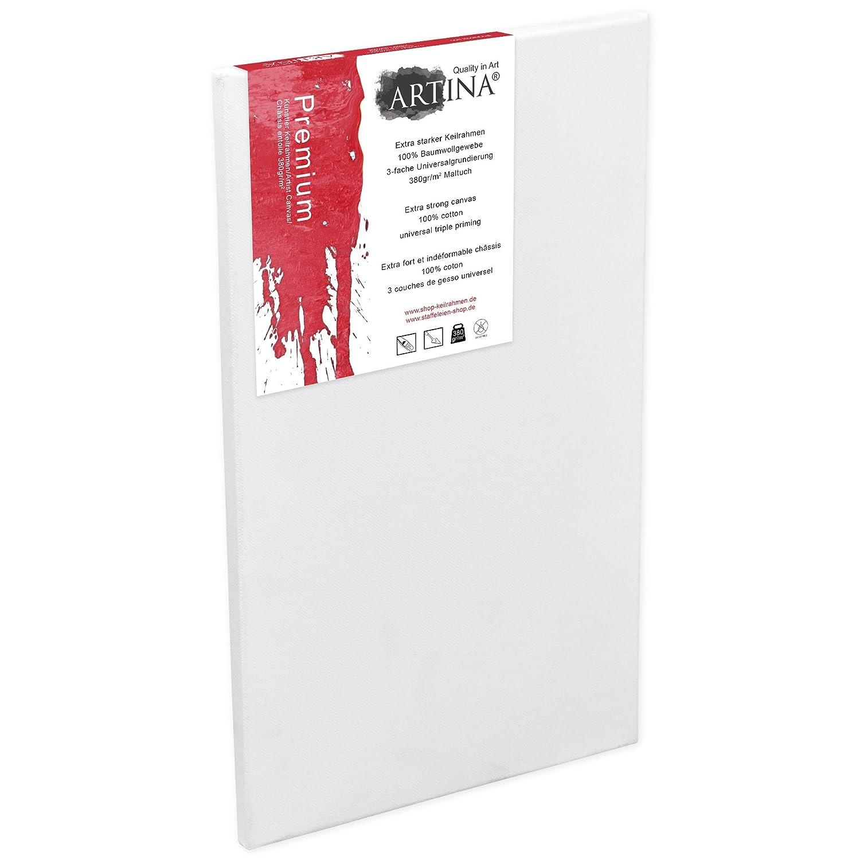 380g//m/² 60x120 cm Con bastidor de alta calidad Artina Premium Set de 2 piezas Lienzos blancos para pintar