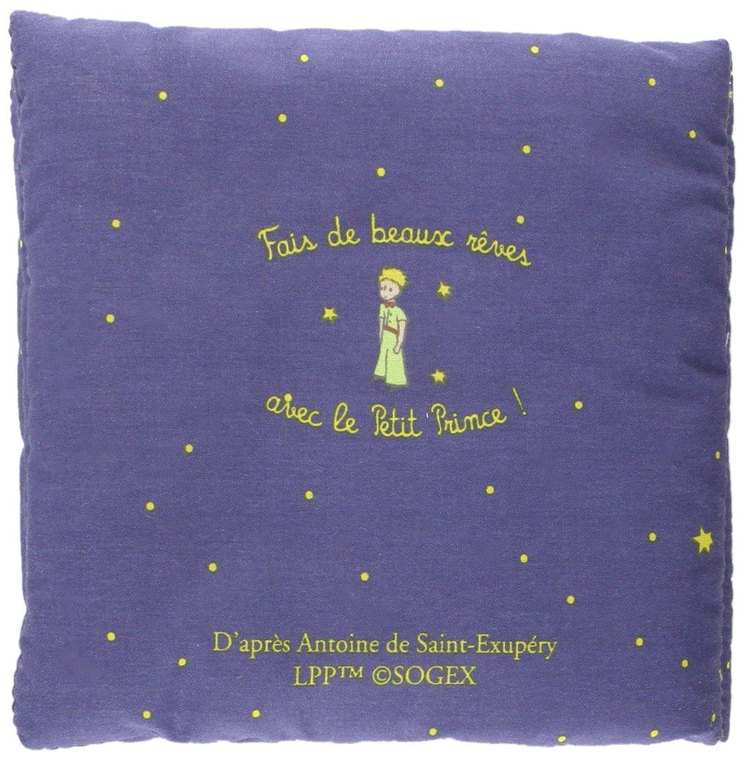 Le petit prince sous les étoiles