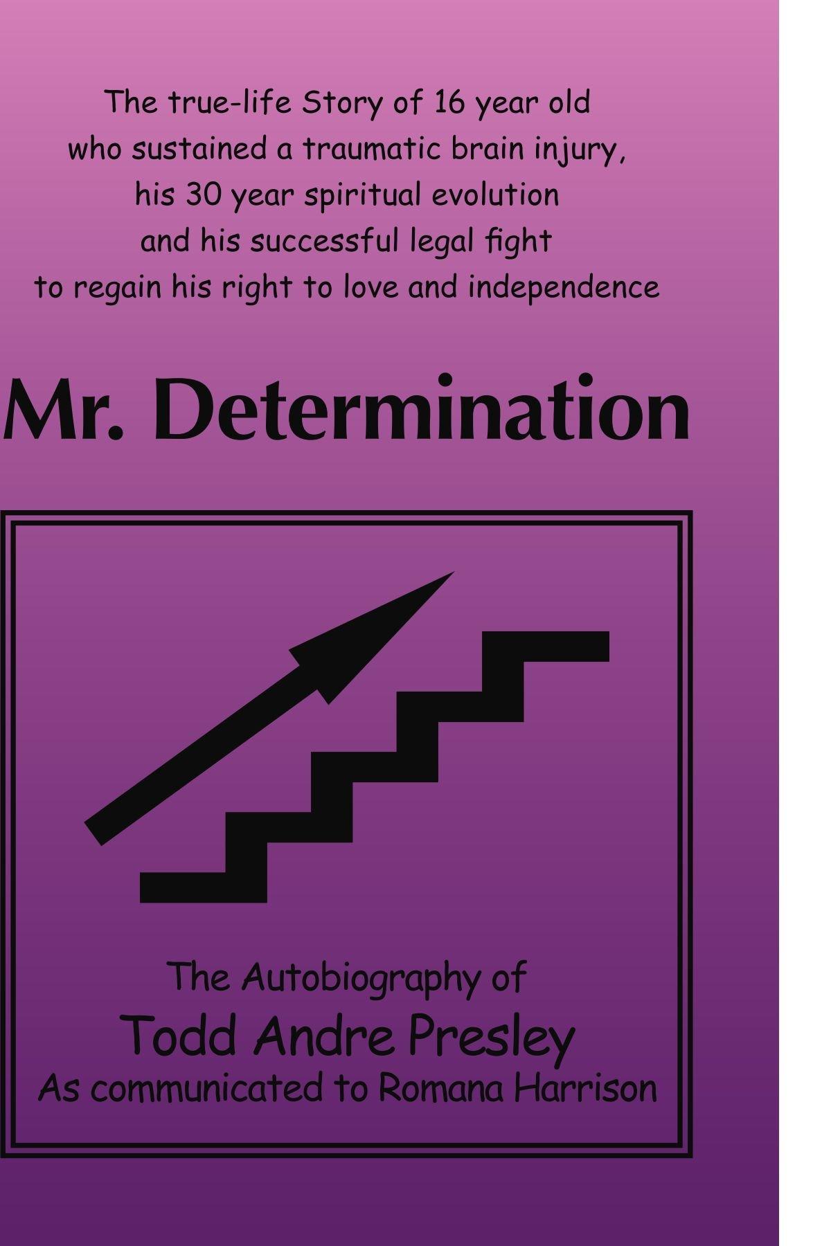 Download Mr. Determination pdf