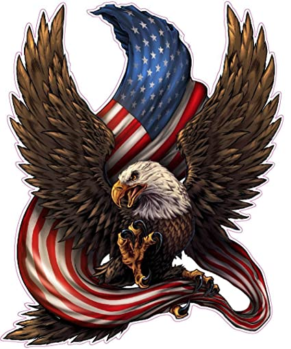 Amazon Com American Bald Eagle American Flag Decal Large Is 12 0