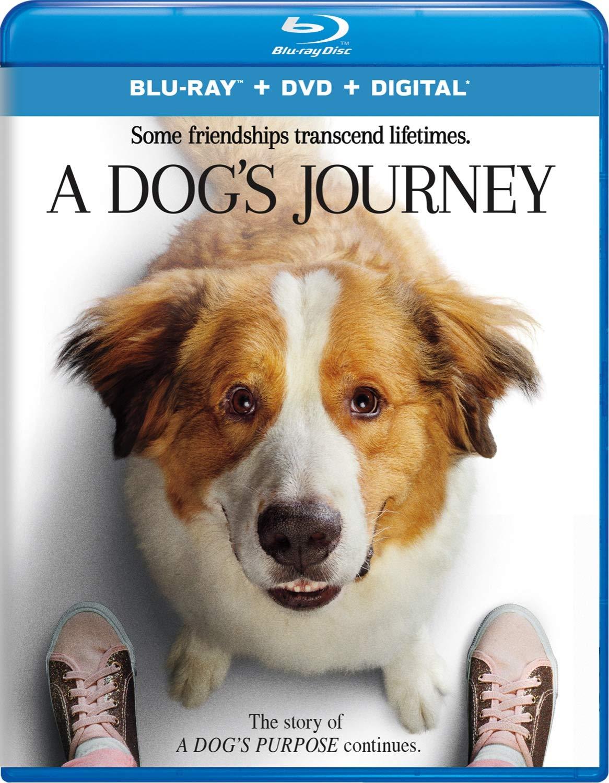 A Dog's Journey [Blu-ray]