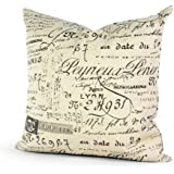 Lavievert Decorative Ramie Cotton Square Throw Pillow Cover Cushion Case Khaki Background Words Pattern Toss Pillowcase with Hidden Zipper Closure 20 X 20 Inches (For Living Room, Sofa, Etc)
