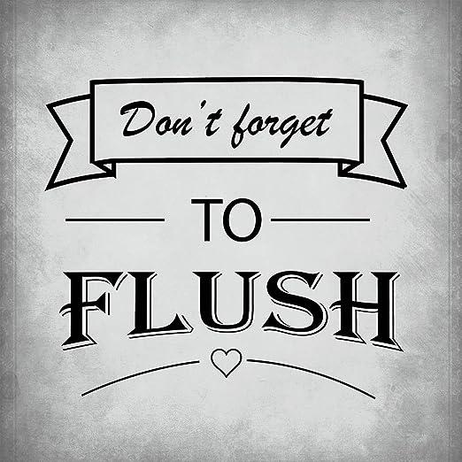 No Olvidar a Flush