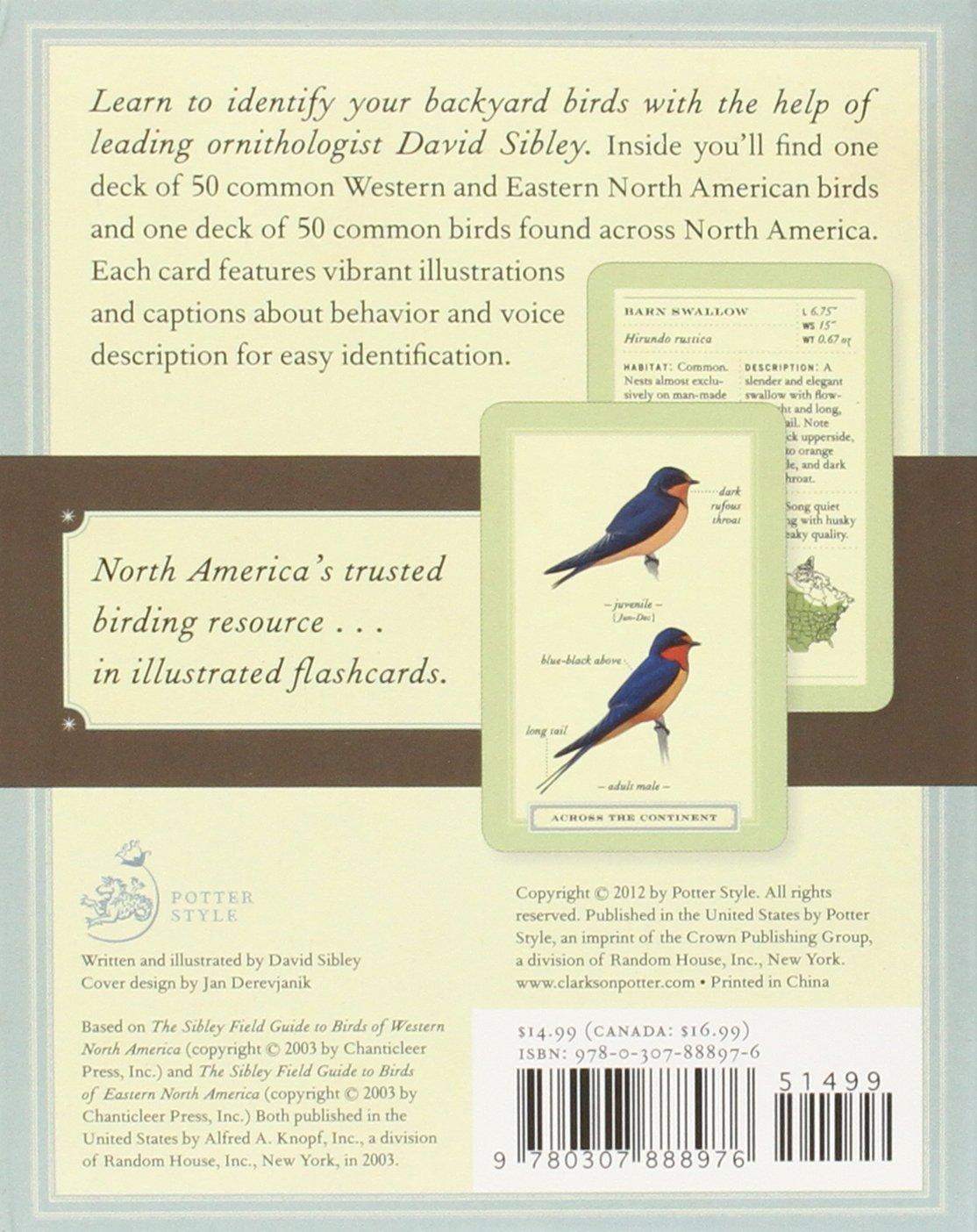 sibley backyard birding flashcards 100 common birds of eastern