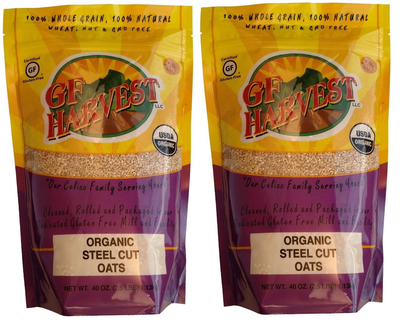 GF Harvest Gluten Free Certified Organic Whole Grain Steel Cut Oats, 40 Ounce Bag, 2 Count by GFHA0