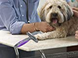 Hertzko Dog & Cat Comb and Deshedding Tool 2 in 1