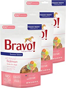 Bravo! Bonus Bites All Natural Freeze Dried Salmon Dog Treats - Grain & Gluten Free - 2 Ounce Bags