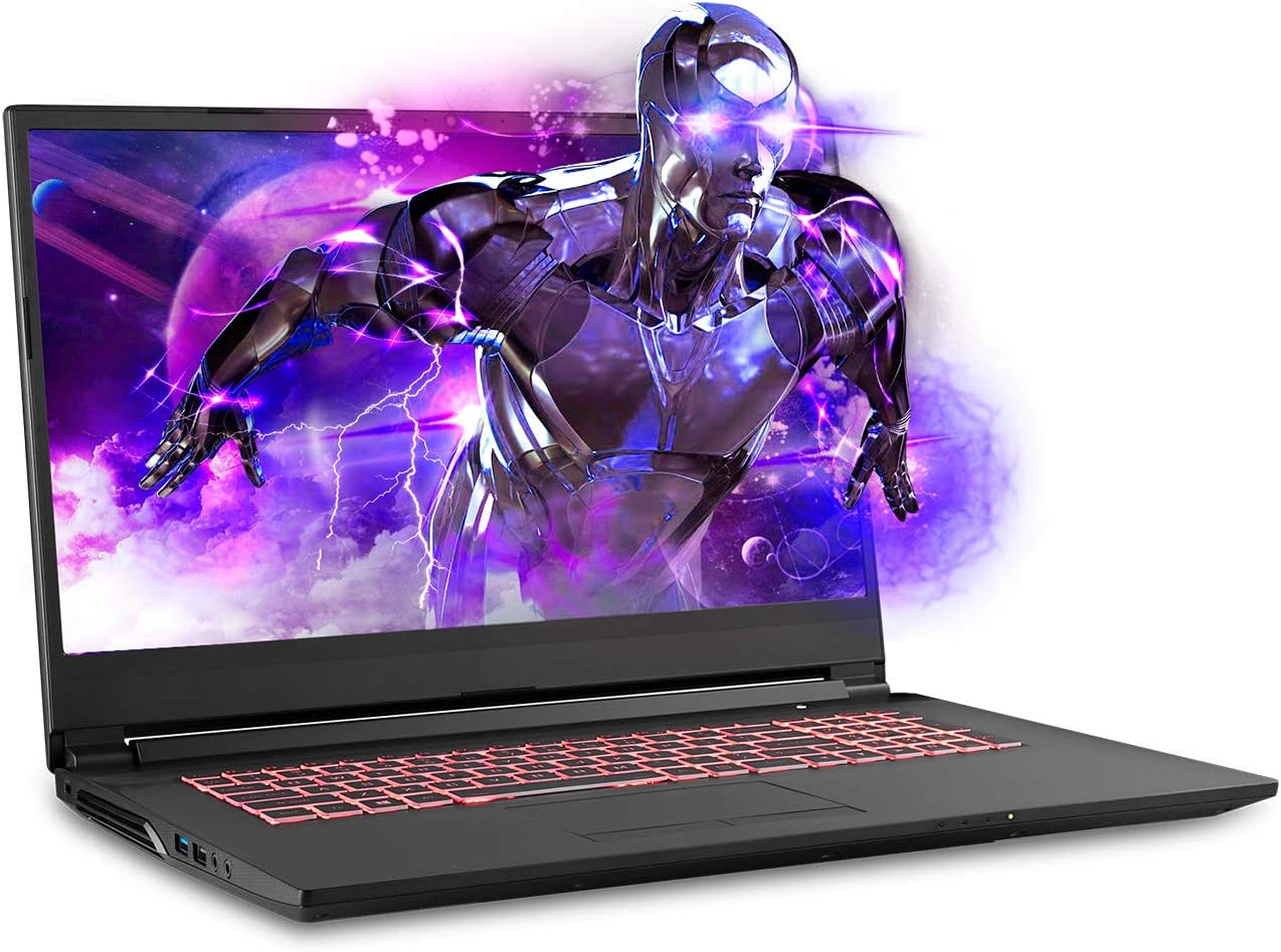 Sager NP7876 17.3 Inches Thin Bezel FHD 144Hz Gaming Laptop, Intel Core i7-9750H, NVIDIA RTX 2060 6GB DDR6, 32GB RAM, 500GB NVMe SSD 1TB HDD, Windows 10 Home