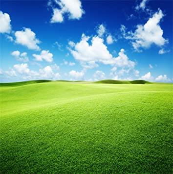 Grassy Field Landscape Backdrop 10x6.5ft Polyester Photography Background Rural Landscape Cloud Blue Sky Green Meadow Lake River Natural Scenery