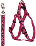 Pet Leash And Harness Adjustable For Small To Medium Dogs - Eliminates Pulling Pressure On Your Pet's Neck