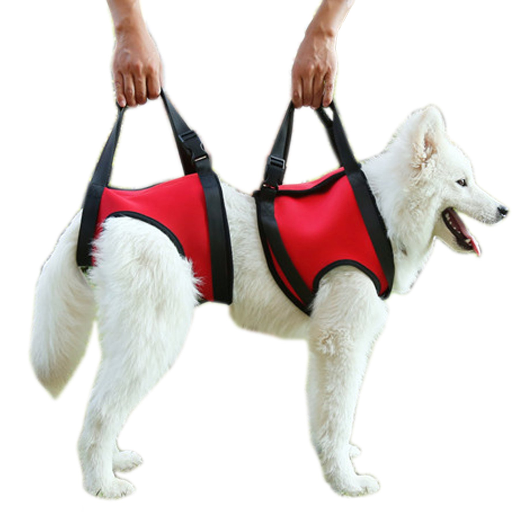 Alfie Pet by Petoga Couture - Harrison Support & Rehabilitation Lifting Harness Front and Rear Set - Color Red, Size: Large