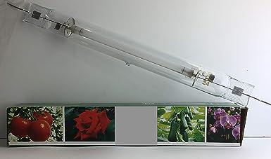 LeuchTek - Lámpara de vapor de sodio (cristal, tamaño único), transparente: Amazon.es: Iluminación