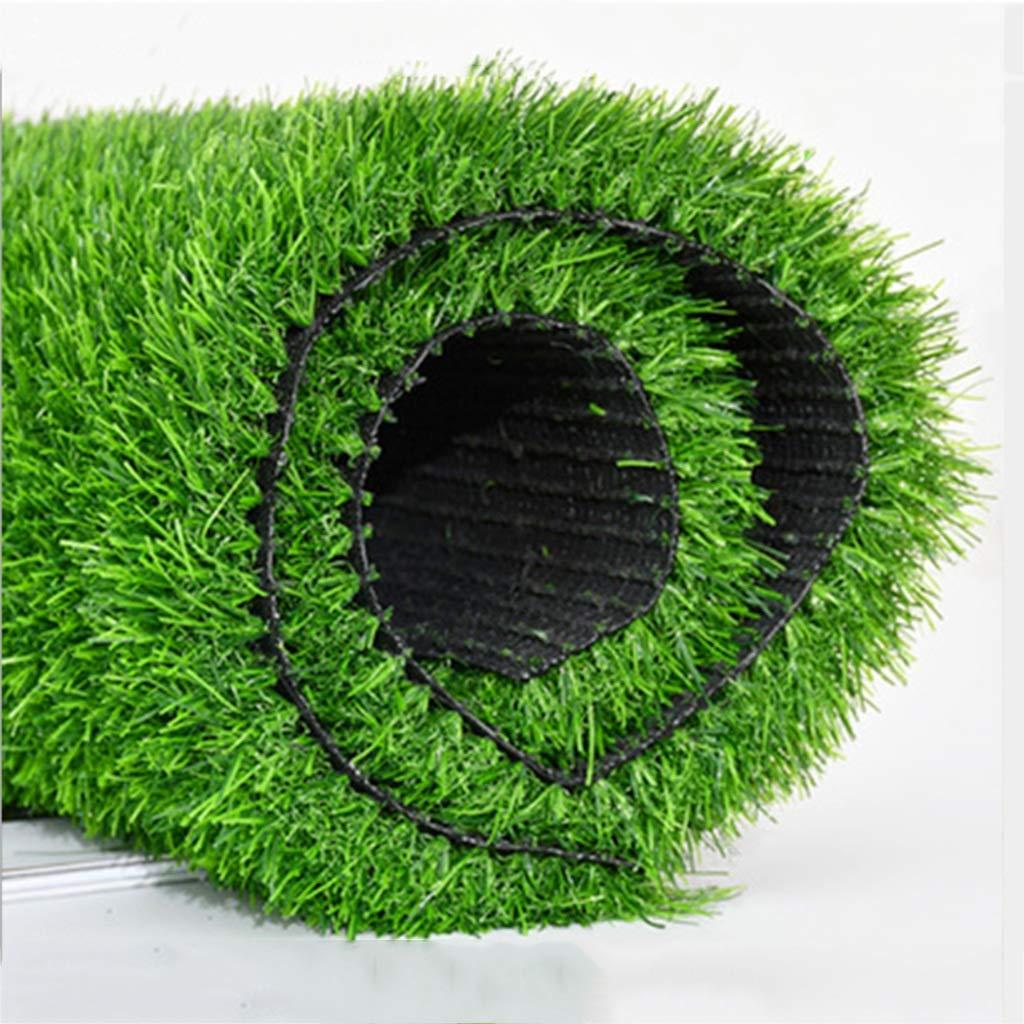 YNFNGXU 30 mmパイル暗号化肥厚人工芝自然でリアルな庭の芝生2 x 1 m偽の芝生(夏草) (サイズ さいず : 5x1m) B07RR2HPFZ  5x1m