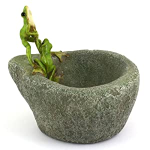 Top Collection Miniature Fairy Garden and Terrarium Frogs on Functional Stone Flower Pot for Succulents, 6-Inch