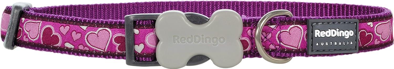 20mm Red Dingo Breezy Love Purple Dog Collar