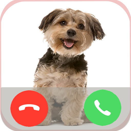 Dog Call - Voicemail Interface