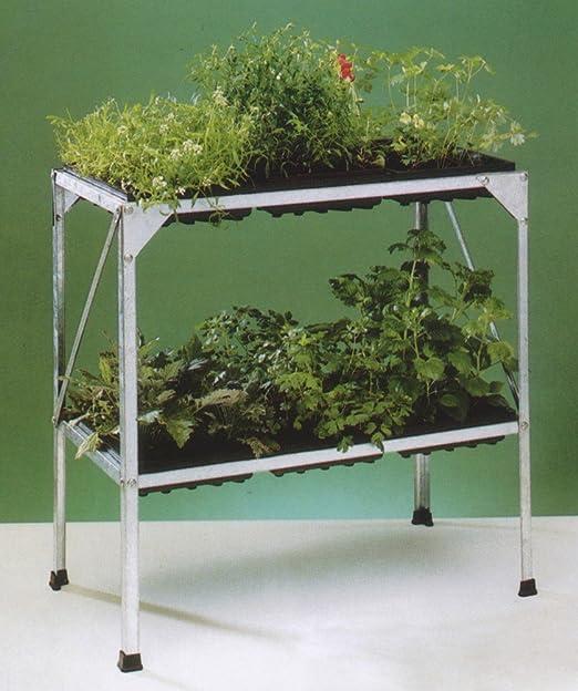 Mesa con 6 cuencos Semillas para invernadero Invernadero Cultivo de verduras hierbas: Amazon.es: Jardín